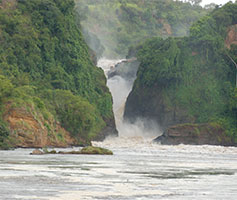 Murchison water falls